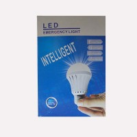 Intelligent Rechargeble LED Bulb 12W