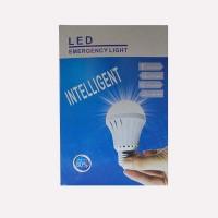 Intelligent Rechargeble LED Bulb 9W